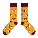 CUP OF SOX - Foto/Kamera/Hipster - Socken in der Tasse - Herren & Damen Geschenksocken Freizeit Socken, Orange, 41-44
