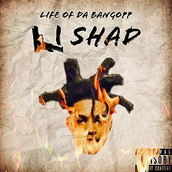 Life of Da Bangopp