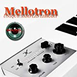 MELLOTRON - Large unique original 24bit WAVE/Kontakt Multi-Layer Samples/Loops Library on DVD or...