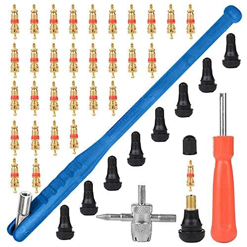 YeenGreen Reifenventilentferner, 43 Pcs Ventilwerkzeuge Set, Reifen Ventileinsatz Ventilinstallationswerkzeug + Einkopf Ventil Entferner + Multifunktion Ventil Werkzeug
