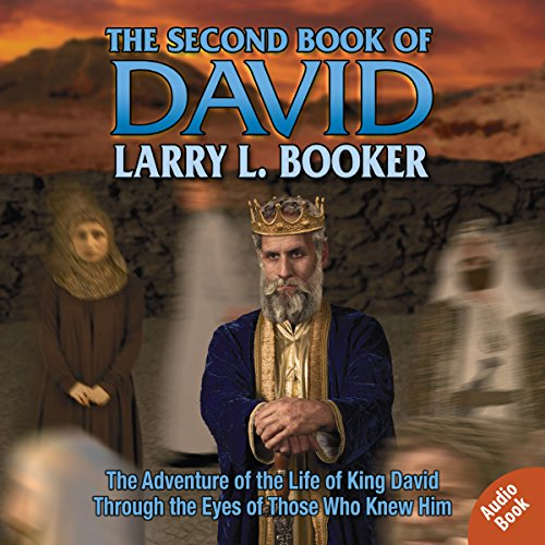 The Second Book of David audiobook cover art