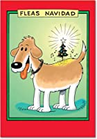 ノミNavidad新しい年ユーモアカード 12 New Year Card Pack (SKU:B5711)