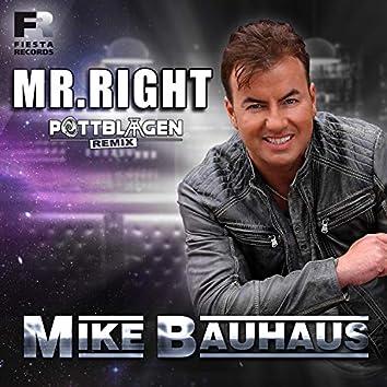 Mr. Right (Pottblagen Remix)