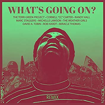 What's Going On (Frank Blythe 4q Remix)