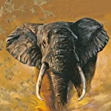 Artland Qualitätsbilder I Kunstdruck Wandbild Gemälde Bild Kunst - Größe 69 x 69 cm - I Tiere Wildtiere Elefant A1HX