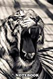 Notebook: Portrait Of A Yawning Tiger , Journal for Writing, College Ruled Size 6' x 9', 110 Pages