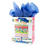 Hallmark 13' Large Gift Bag with Tissue Paper (Bright Cake) for Birthdays, Parties and More
