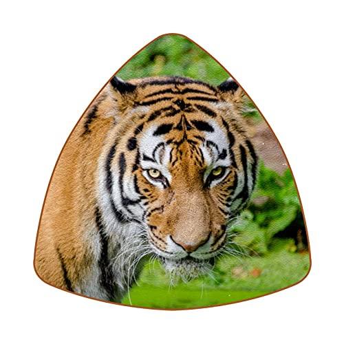 Bennigiry Cat Tiger Violent - Posavasos de piel para exteriores, resistentes al calor, 6 unidades