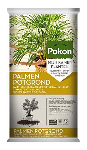 Pokon Palmen-Erde, Blumenerde, Substrat für Palmen, mit Palmendünger für 60 Tage und TerraCottem, 10L