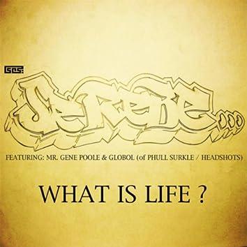 What Is Life? (feat. Mr. Gene Poole & Globol)