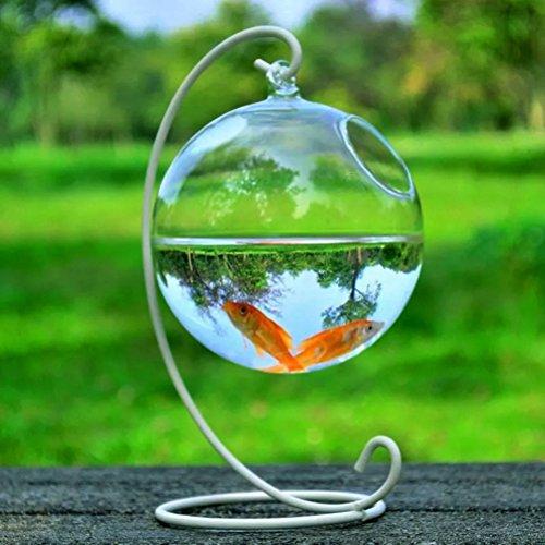 shengna Forma redonda colgante de cristal para acuario, pecera, flor, florero, decoración del hogar (color: blanco)