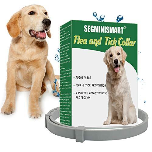 SEGMINISMART Zeckenhalsband für Hunde, Verstellbar Zecken Halsband für Hunde und Katze, Wasserdicht Hund Flohhalsband, Gegen Zecken