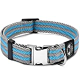 Pet Collar with Metal Buckle and D Ring   Durable Dog Collar with Reinforced Stitching and Nylon Webbing Adjustable Dog Collar to fit Small and Medium Dog or a Puppy (Medium, Blue/Gray Stripe)