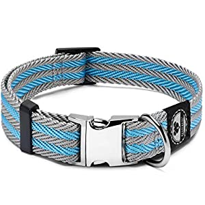 Regal Dog Products Pet Collar with Metal Buckle and D Ring | Durable Dog Collar with Reinforced Stitching and Adjustable Dog Collar to fit Small and Medium Dog or a Puppy (Medium, Blue/Gray Stripe)