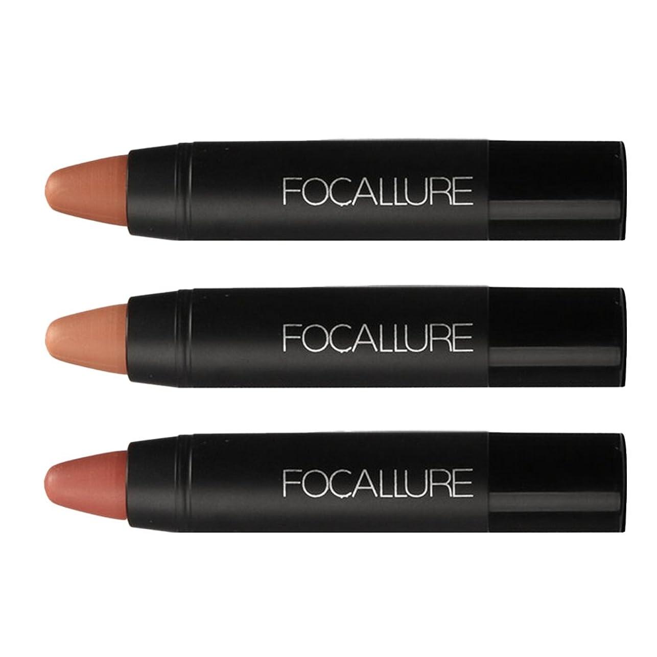 成功するテンションパネルPerfeclan 3色セット メイクアップ リップスティック リップ マット シマー ベルベット 潤い 唇メイク 光沢 3タイプ選べる - #2