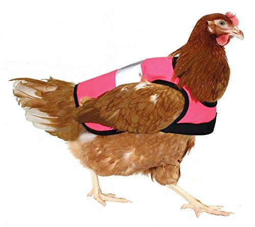 Omlet Warnweste für Hühner - Pink