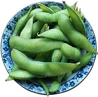 Edamame Midori Giant Bean Seeds - Delicious Large Edamame That Grow into Restaurants Serve