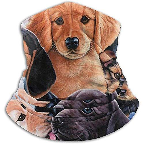 Cachorro Collage Calentador de cuello Polaina Diadema...