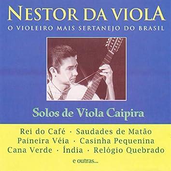 Solos de Viola Caipira: O Violeiro Mais Sertanejo do Brasil