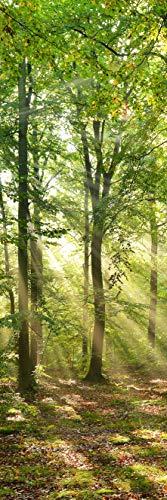 INFRAROT GLAS-HEIZUNG 500W-WALD-(1644)-60x120 cm-Frontmaterial Glas-Bild-Heizung Heizpaneel Elektroheizung Heizkörper Flach Heizstrahler Strahlungsheizung 5 Jahre Garantie Zertifiziert CE ROHS SAA