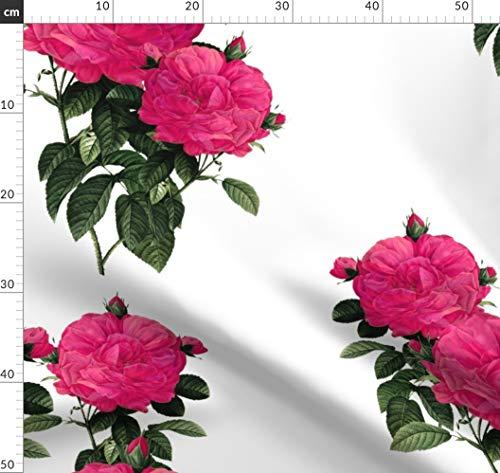 Blumen, Romantisch, Redouté, Rosa, Pink, Botanisch Stoffe - Individuell Bedruckt von Spoonflower - Design von Peacoquettedesigns Gedruckt auf Leichter Baumwoll Twill