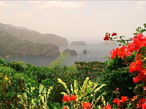 Trinidadand Tobago: Where East Meets West