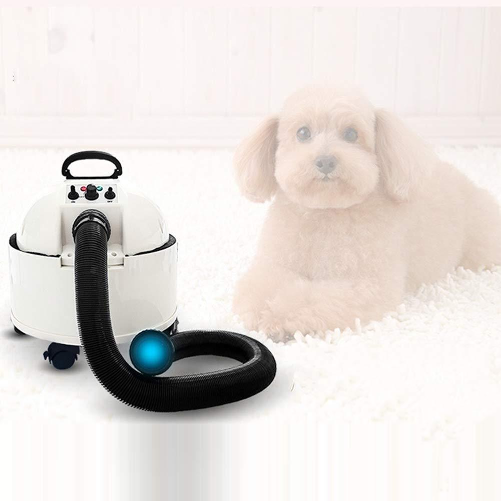 Soplador de agua for mascotas Secador de pelo de perro de alta potencia, secador de bajo