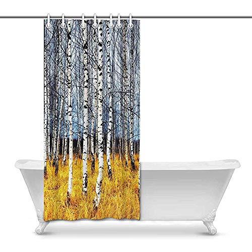 Hotyle Cortina de Ducha Otoño Abedul Grove Entre Naranja Hierba Arte Baño Decoración Cortina de baño con Ganchos