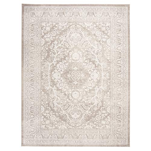 Safavieh Reflection Collection RFT668A Vintage Distressed Area Rug, 9'...