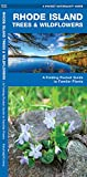Rhode Island Trees & Wildflowers: A Folding Pocket Guide to Familiar Plants (Wildlife and Nature Identification)