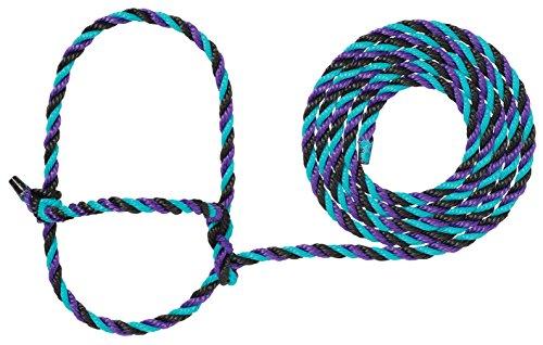 Weaver Leather Livestock Cattle Rope Halter, Purple/Black/Teal
