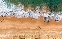 TYXKHカウントクロスステッチキット 海辺の波のビーチ 40×50cmのDIYクロスステッチキットは、初心者向けの刺繡スターターキットのフルレンジを刻印しています。芸術11CT3ストランド室内装飾
