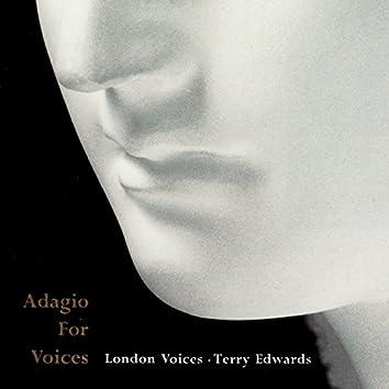 Adagio for Voices