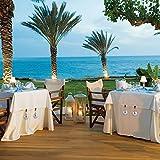 Tuxuzal 4er Set Tischdeckenbeschwerer für draußen Tischtuchklammern Tischtuchbeschwerer mit Klemmkraft Tischdeckenbeschwerer Vorhang Beschwerer Tischdecken Gewichte Runde Kugel - 5