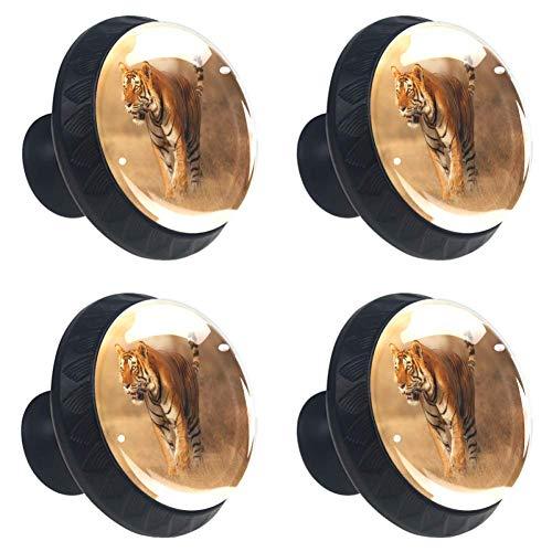 TIZORAX Schubladenknöpfe, rund, mit Schrauben, 4 Stück