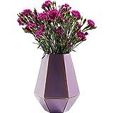 Vaso: angoli e bordi sono negli anni '60 sono tornati e hanno portato il tuo pezzo più bello. Il vaso di vetro color lilla ricorda un prisma di trapezi isosceli. Le interfacce dei singoli poligoni sono mantenute trasparenti e rivelano il contenuto in...
