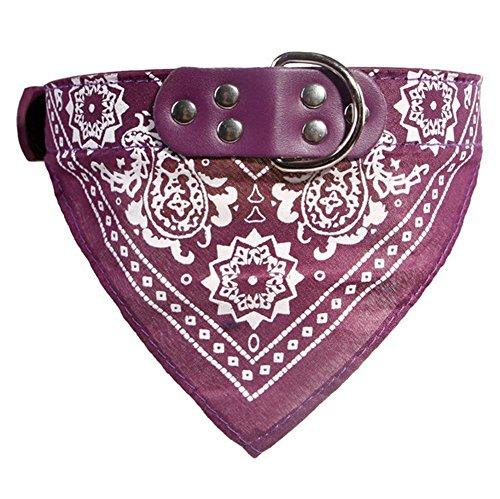 ducomi® dogemi – verstelbare halsband met bandana voor honden en katten – leuk accessoire voor uw hond en uw kat, M, Paars