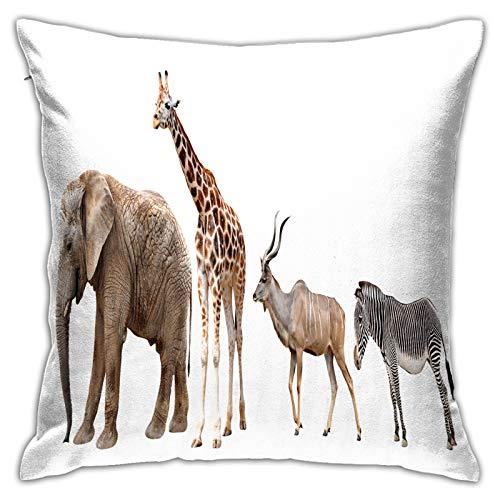 LiBei Funda de Cojín,Jirafa kudu Cebra Elefante Aislado en,Funda de Almohada Cuadrado para Sofá Coche Cama Sillas Decoración para Hogar(45 x 45cm)