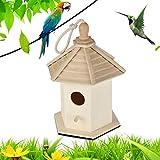 AYRSJCL Jaulas de pájaros nidos DOX Madera Casa del pájaro Que cuelga Nido casa del pájaro casa del pájaro Caja de Madera Caja de Casas de pájaros de Mascotas Accesorios para Fuentes