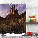 Cortina de ducha con diseño de cactus y roca envejecida, tela y 12 ganchos