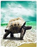XZDPPTBLN Mantas de Franela Súper Suave de Lana Tortuga Animal de Playa Mantas con Estampados Esponjosa y Cálida Mantas para la Cama y el Sofá 150cm x 200cm
