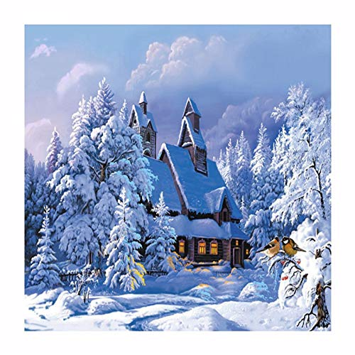 YBS Wall Art Paintings Diamond Painting - DIY Winter Landscape House Diamond Painting Full of Diamond Stickers Diamond Cross Stitch Suitable for Bedroom Home Decorations (Size : 3-30x40cm)