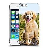 Head Case Designs Chiot De Golden Retriever Races Canines Populaires Coque Dure pour l'arrière et Fonds D'Écran Design Assorti Compatible avec Apple iPhone 5 / iPhone 5s / iPhone SE 2016