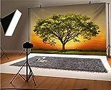 Fondo de vinilo para fotografía paisajística de 5 x 3 pies, paisaje de puesta de sol en un valle con un gran árbol viejo fondo de fotos para fondo de estudio de fotos, fondo de pared