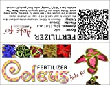 dgdfg Coleus fertilizante Coleus, Plectranthus suficiente para 20 litros