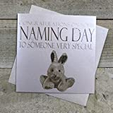 WHITE COTTON CARDS Code N204Congratulations on Your Naming Day to Someone Very Special Handmade Naming Day