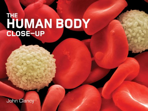 The Human Body Close-Up (Close-Up (Firefly))
