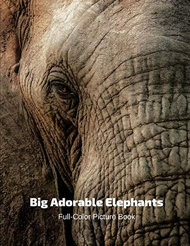 Big Adorable Elephant Full-Color Picture Book: Elephant Photography Book- Wildlife Animal Nature
