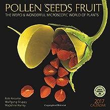 Pollen Seeds Fruit 2017 Wall Calendar: The Weird & Wonderful Microscopic World of Plants