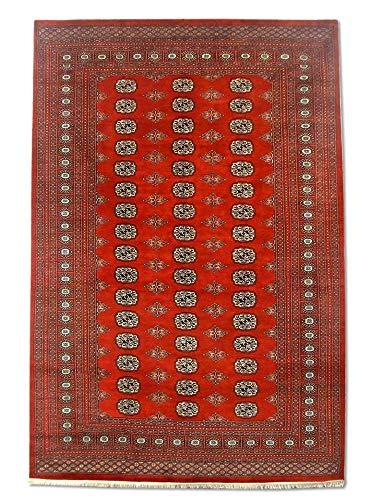 Pak Persian Rugs Tapis Noué Main Boukhara, Bourgogne/Rouge, Laine, Medium, 192 X 286 cm